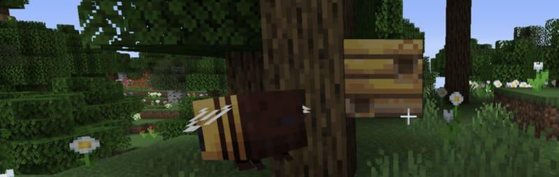 Пчела и улей